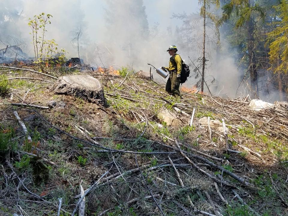 Fighting big wildfires in the summer - by igniting small fires now. That's the idea behind a method of fire prevention called prescribed burns. It's happening now in the Westfir-Oakridge area, just before the heat of the summer. (USDAFS)