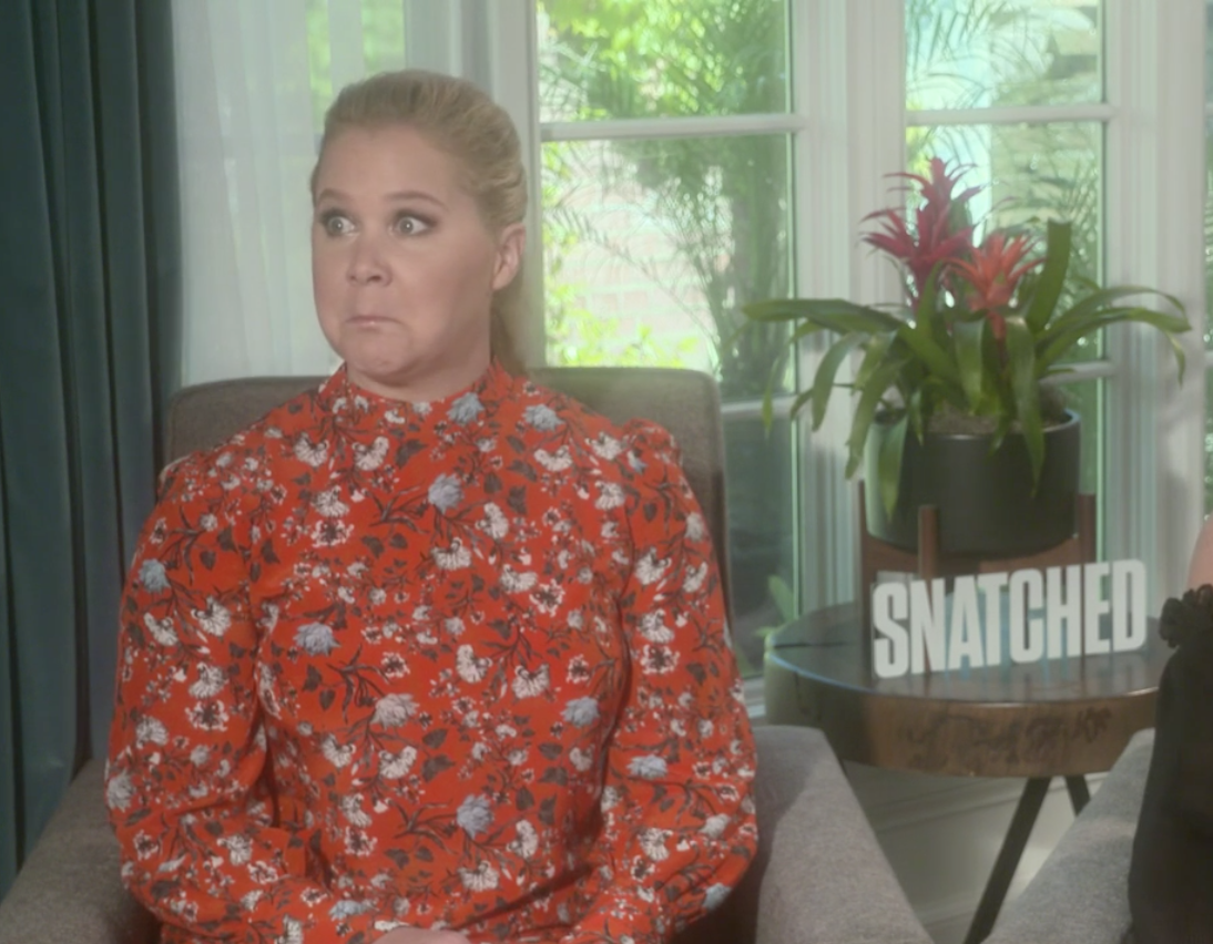 "Amy Schumer stars in ""Snatched."""