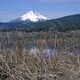 Klamath Tribes sue regulators over management of Oregon lake