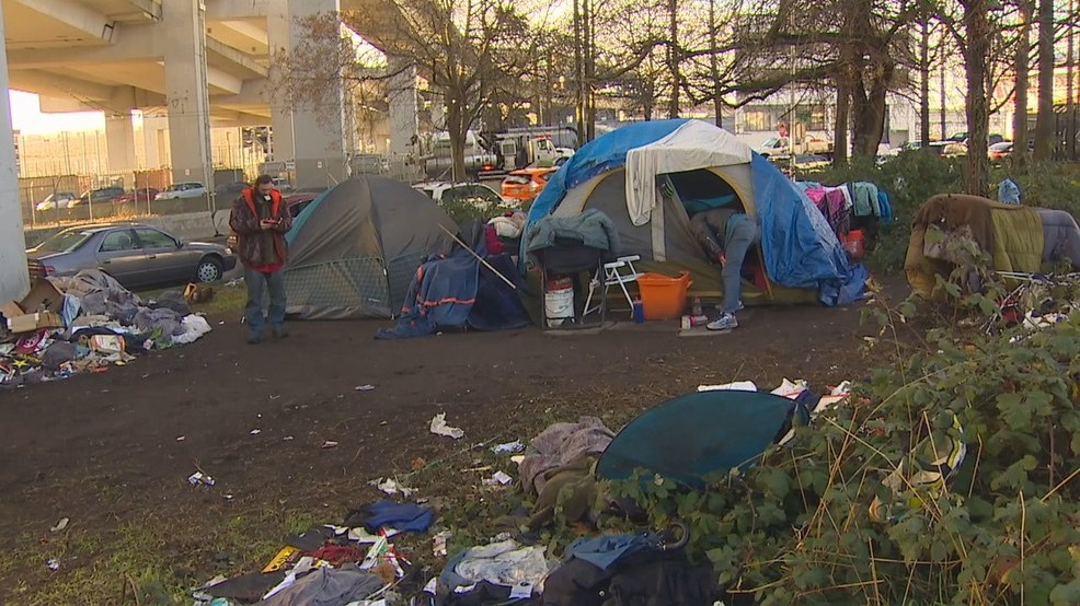 seattle homeless camp SoDo area freeway overpass KOMO.jpg