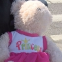 Richland woman tries to reunite teddy bear with owner