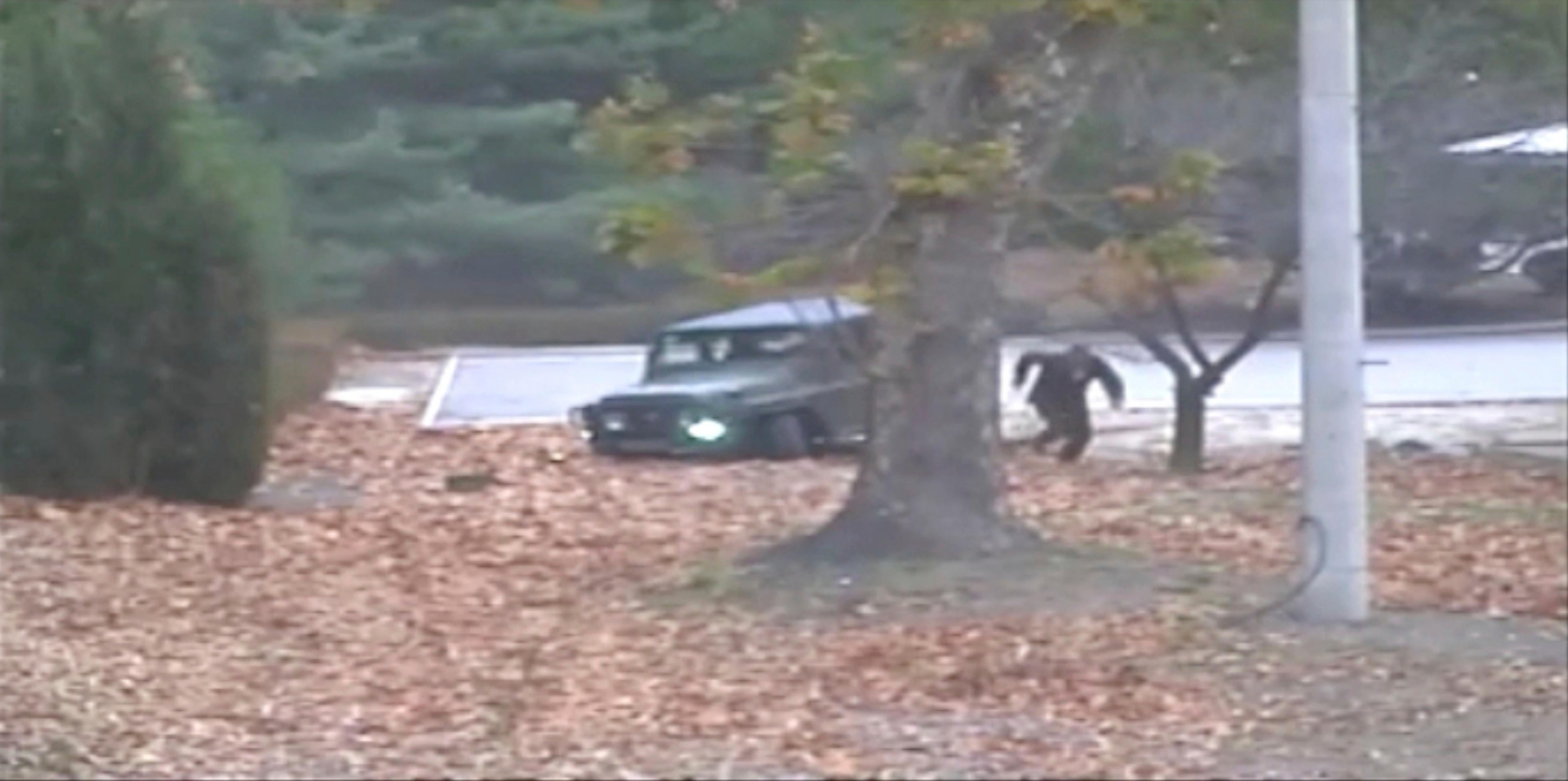 This image made from Nov. 13, 2017, surveillance video released by the United Nations command shows a North Korean soldier running from a jeep and later shot by North Korean soldiers. A North Korean soldier made a desperate dash to freedom in a jeep and then on foot, being shot at least five times as he limped across the border and was rescued by South Korean soldiers, according to dramatic video released by the U.S.-led U.N. command Wednesday. (United Nations Command via AP)