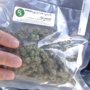 Business delivers free pot to your door, for a fee