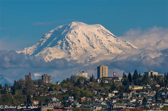 Mt. Rainier looms large (Photo: Richard Smith)