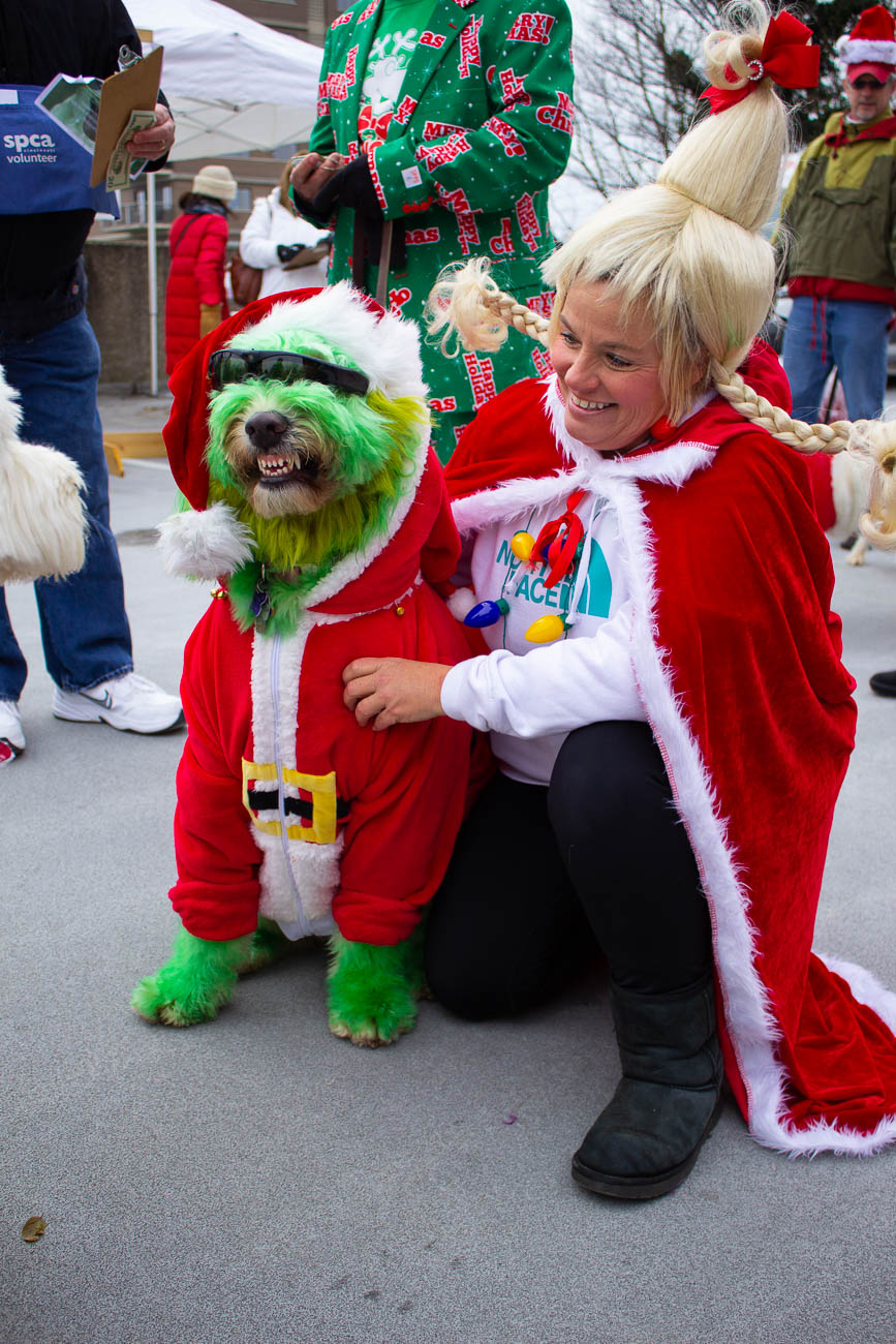 Annie Rose came colored in full-Grinch, alongside her Cindy Lou Hoo owner. She won Pet Valu's Best in Show award!{ }/ Image: Katie Robinson // Published: 12.9.18