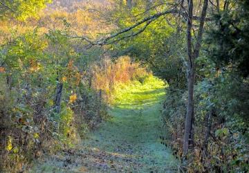 Long Branch Farm Cincinnati Nature Center