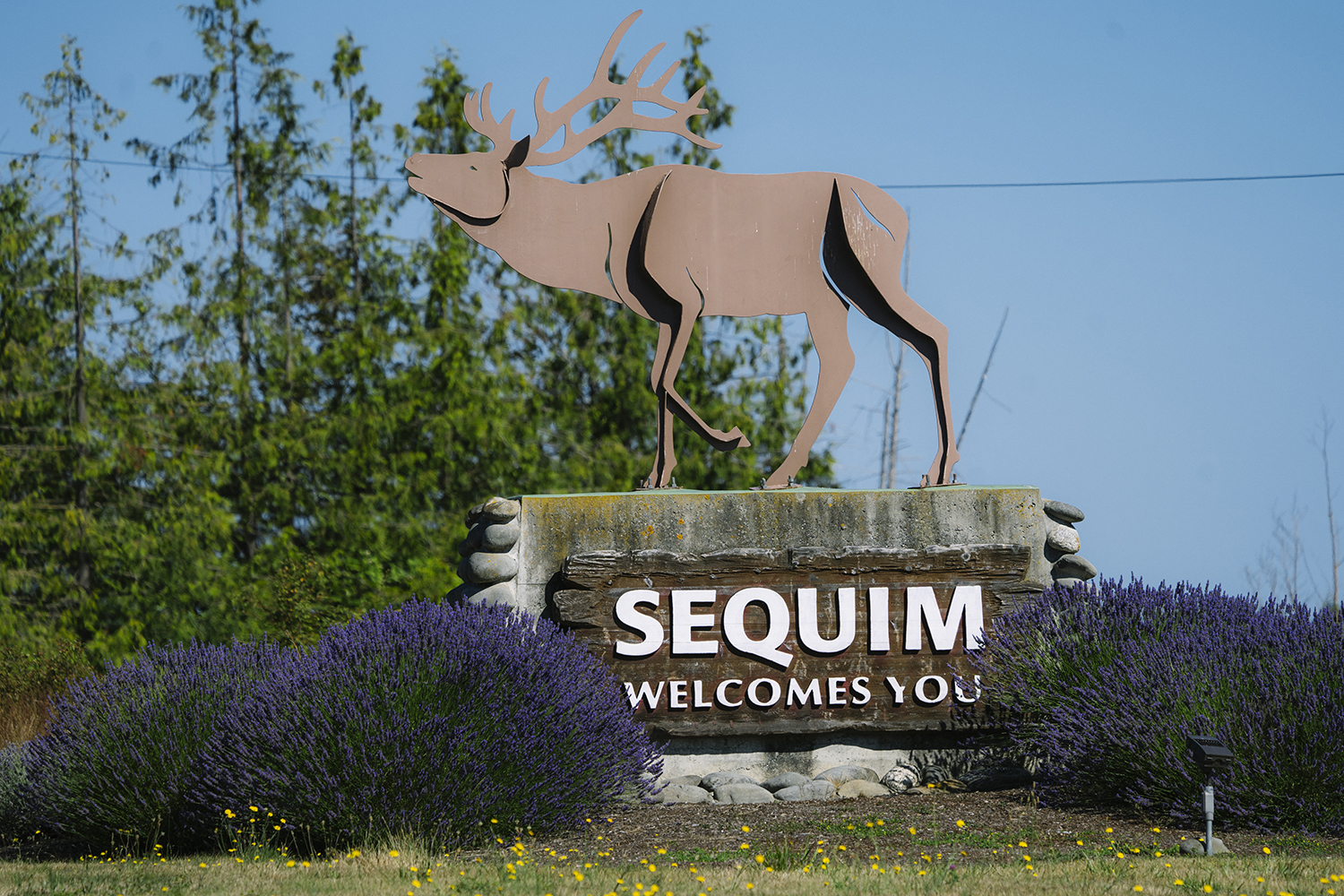 SEQUIM. It's easy to focus on the destination rather than the journey, but that's only part of the story. There are so many exciting things to see along the way; the general store in a small town, a historical marker with information about an important event or a sign welcoming visitors into a town. Photographer Anthony May has been collecting Welcome signs from towns and cities he's visited for over nine years and across several states. This gallery focuses specifically on Washington. (Image: Anthony May / Seattle Refined)