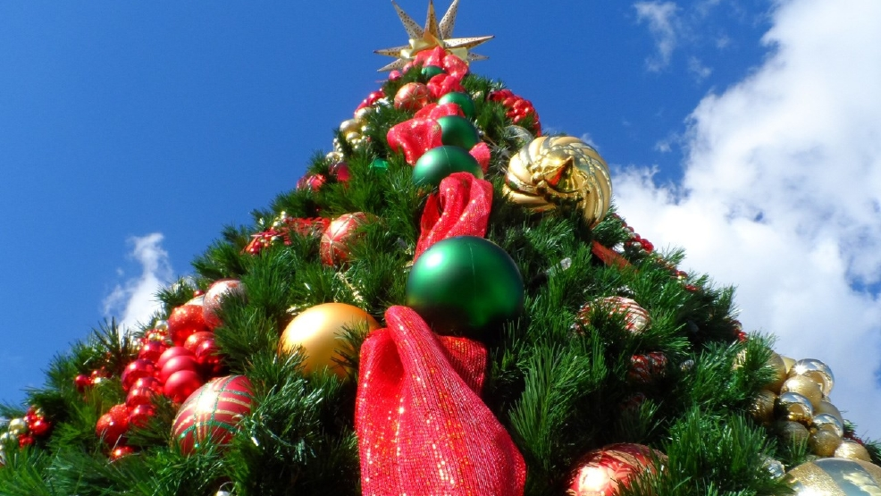 poll of the day when do you take down your christmas tree - When To Take Christmas Tree Down