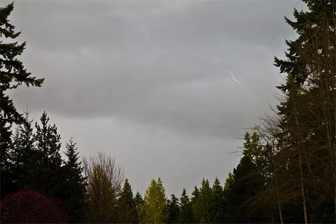Redmond Lightning (Photo: Matthew Charchenko)