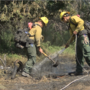 Firefighters still trying to keep Bateman Island fire contained