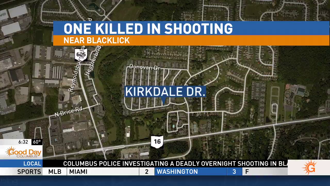 According to police, the shooting happened on Kirkdale Drive, just north of E Broad St., around 2:30 a.m. (WSYX/WTTE)
