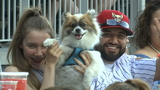Sanchez leaves with injury in MLB rehab start on 'Bark-in-the-Park Night'