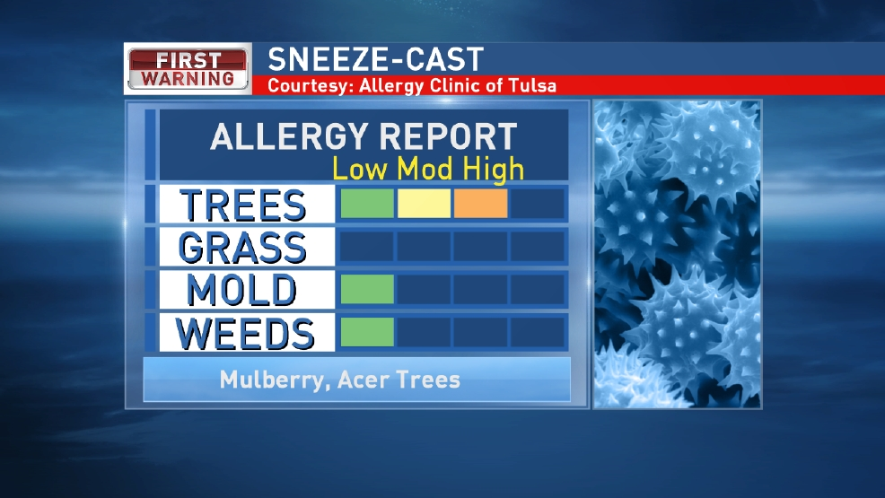 Allergy Report: Lots of Pollen in the Air
