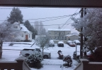 seattle_snow_0227_03.jpg