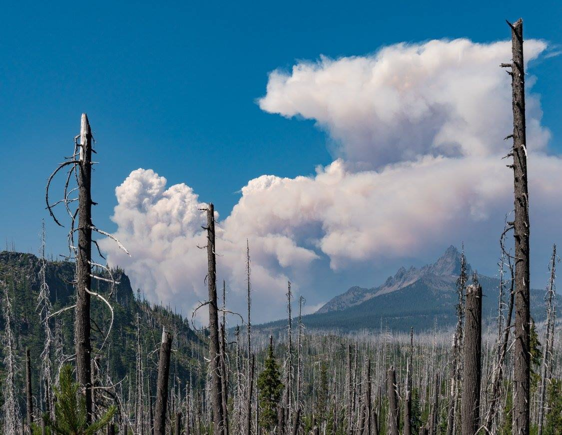 Smoke from the Whitewater Fire forms a plume near Three Fingered Jack on August 2, 2017. (USDA Forest Service)