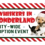 Don't Miss It: 'Whiskers in Wonderland' adoption event this weekend
