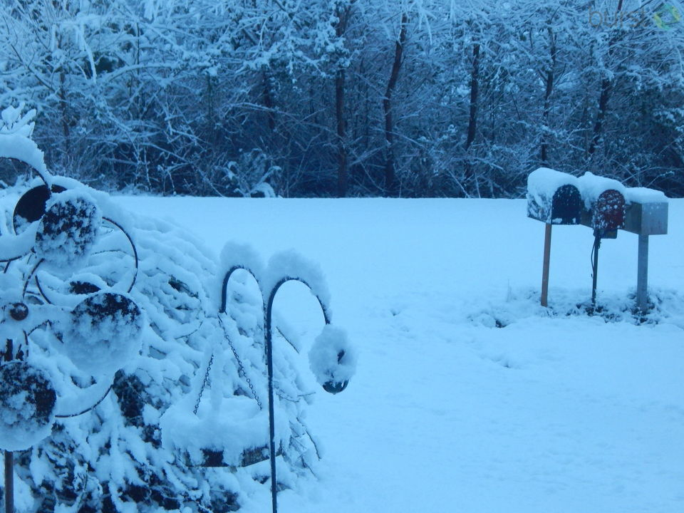 Goble, OR about 4 inches of snow - Photo from Susan Rolf-Tooley<p></p>