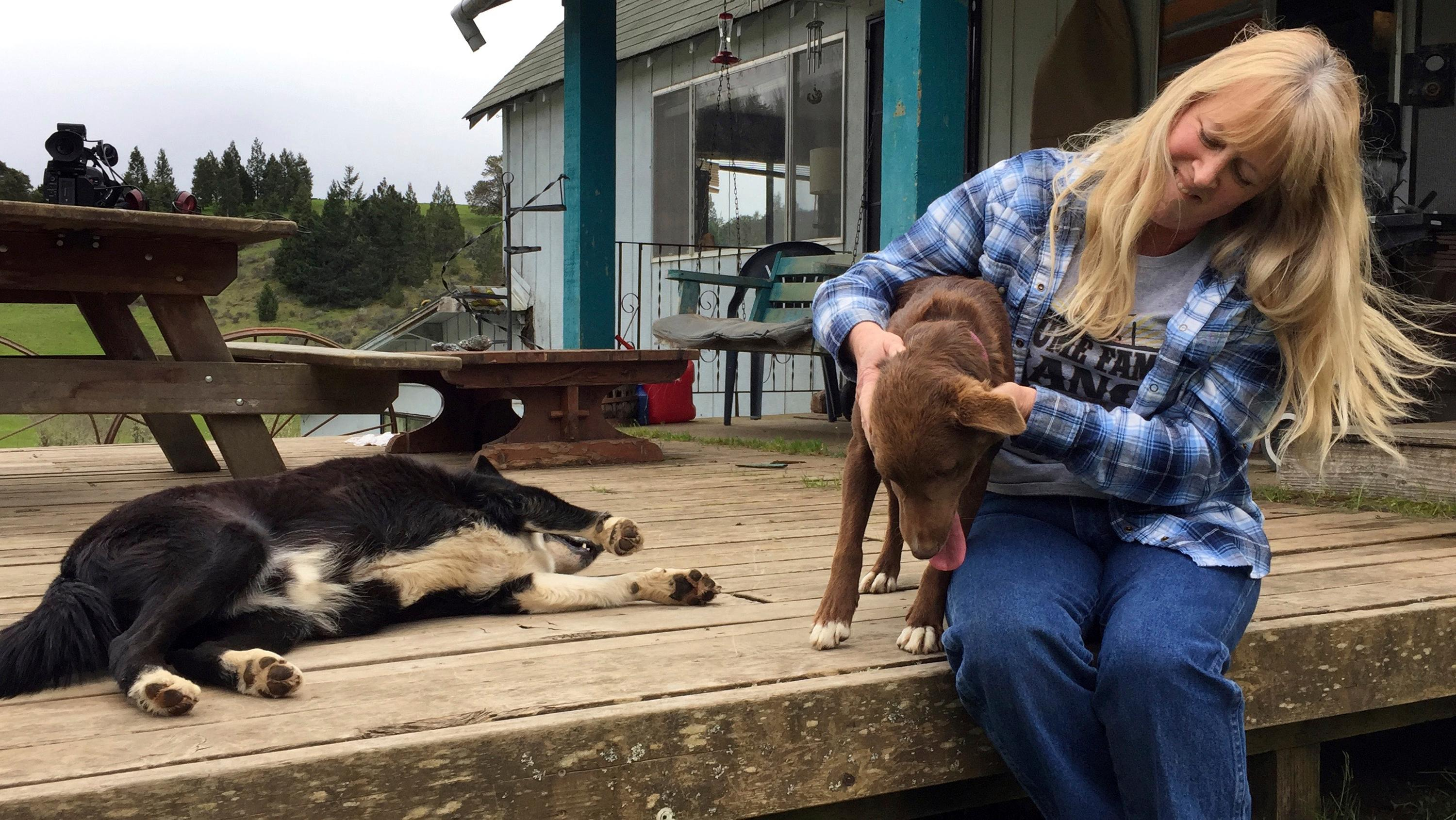In this April 5, 2017 photo, longtime Tiller resident Paula Ellis plays with her dogs outside her home in Tiller, Ore. Ellis spent her childhood in Tiller hunting and riding horses and now worries about what will happen to the tiny, dying timber town. Tiller, a dot on a map in remote southwestern Oregon, is for sale for $3.5 million and the elementary school is for sale separately for $350,000. (AP Photo/Gillian Flaccus)