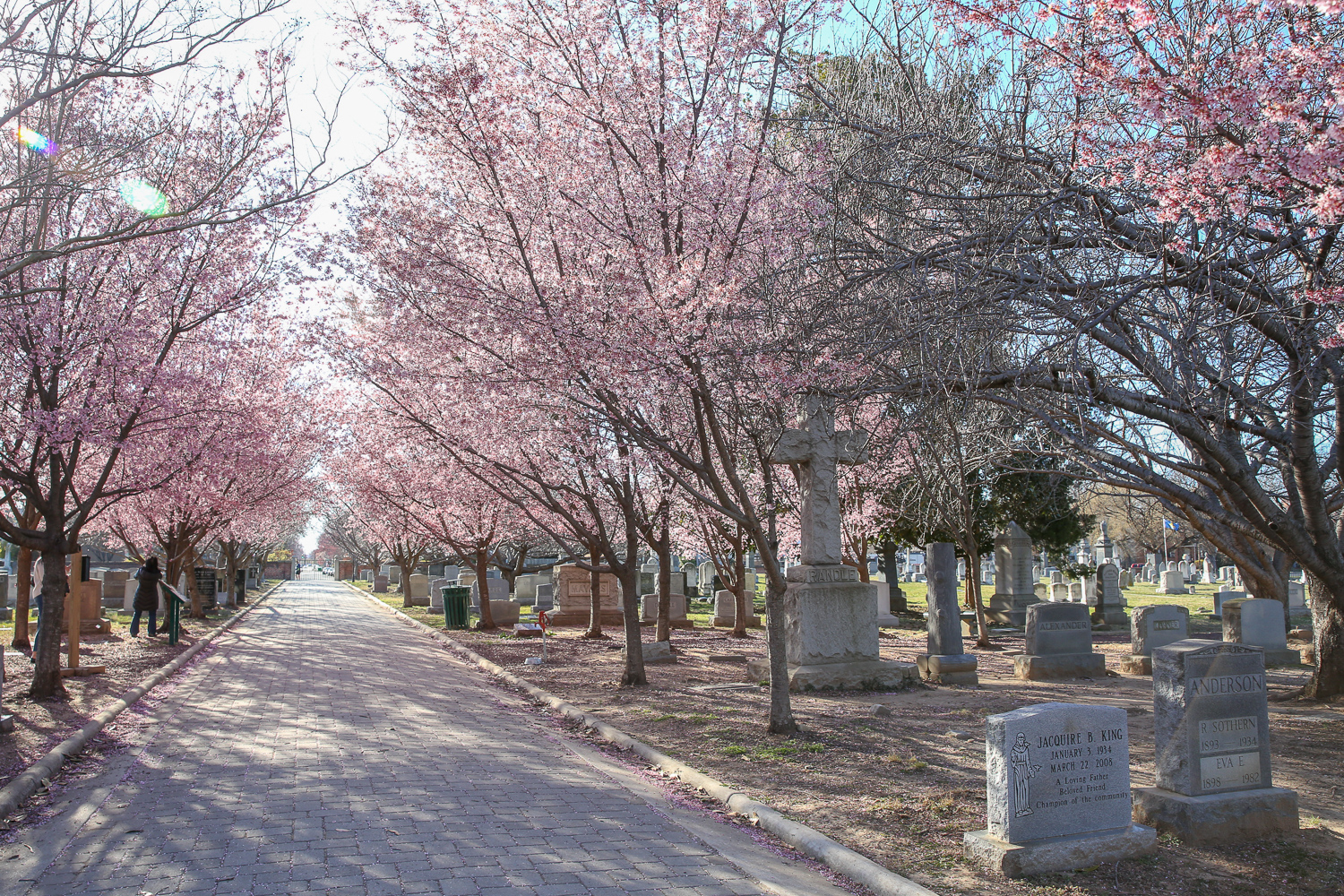 Congressional Cemetery is the final resting place of many of history's most famous figures. However, the fascinating stories don't end with well-known names. Here are some of the most interesting people you may not know about at Congressional Cemetery. (Amanda Andrade-Rhoades/DC Refined)