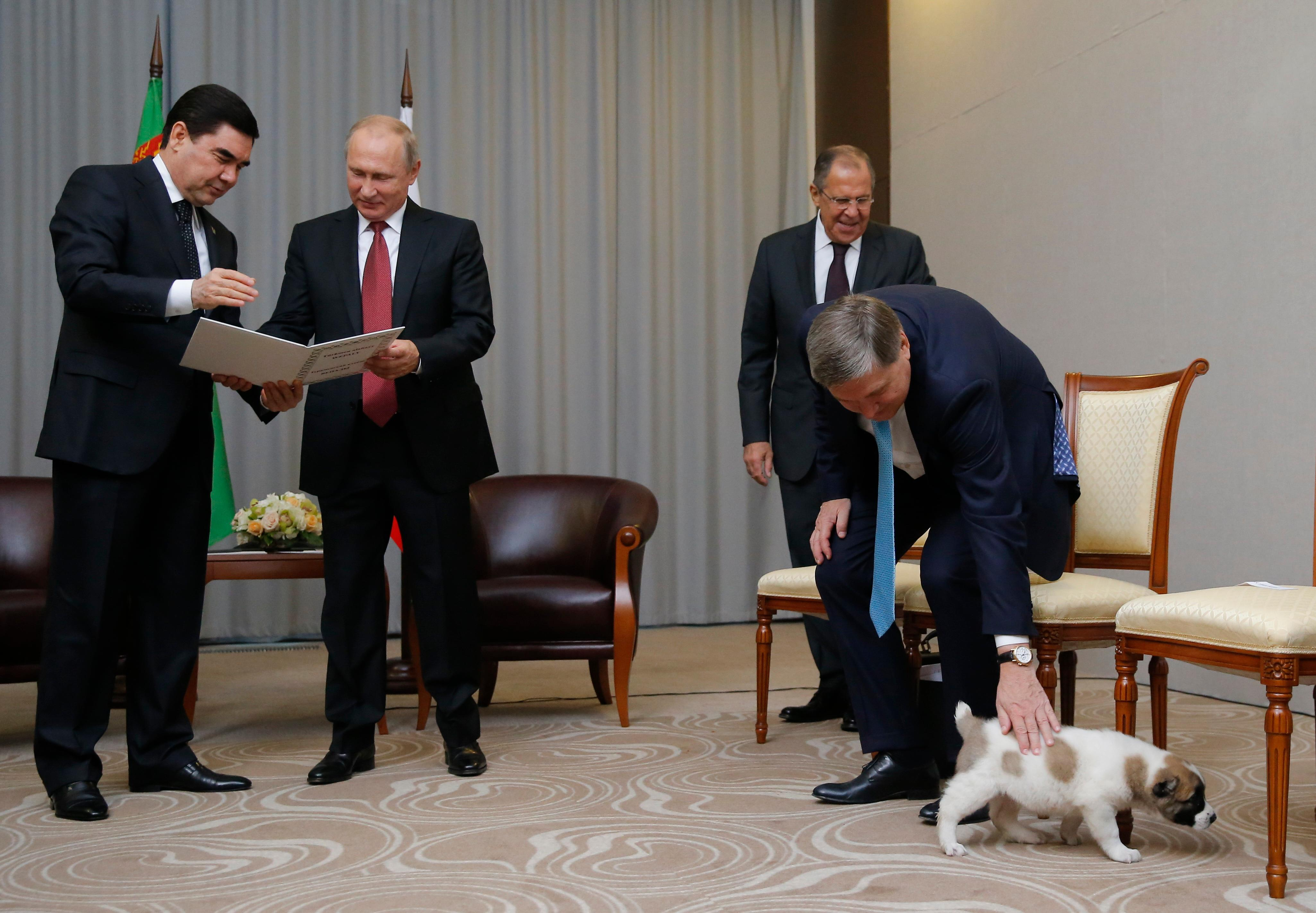Turkmenistan's President Gurbanguly Berdymukhamedov, left, shows documents of presented by his puppy to Russian President Vladimir Putin, second right, as Foreign Minister Sergey Lavrov, second right, Presidential foreign affairs adviser Yuri Ushakov, right, play with the puppy during their meeting in the Bocharov Ruchei residence in the Black Sea resort of Sochi, Russia, Wednesday, Oct. 11, 2017. The presidents met at the sidelines of a summit of leaders of ex-Soviet nations in Sochi. (Maxim Shemetov, Pool Photo via AP)
