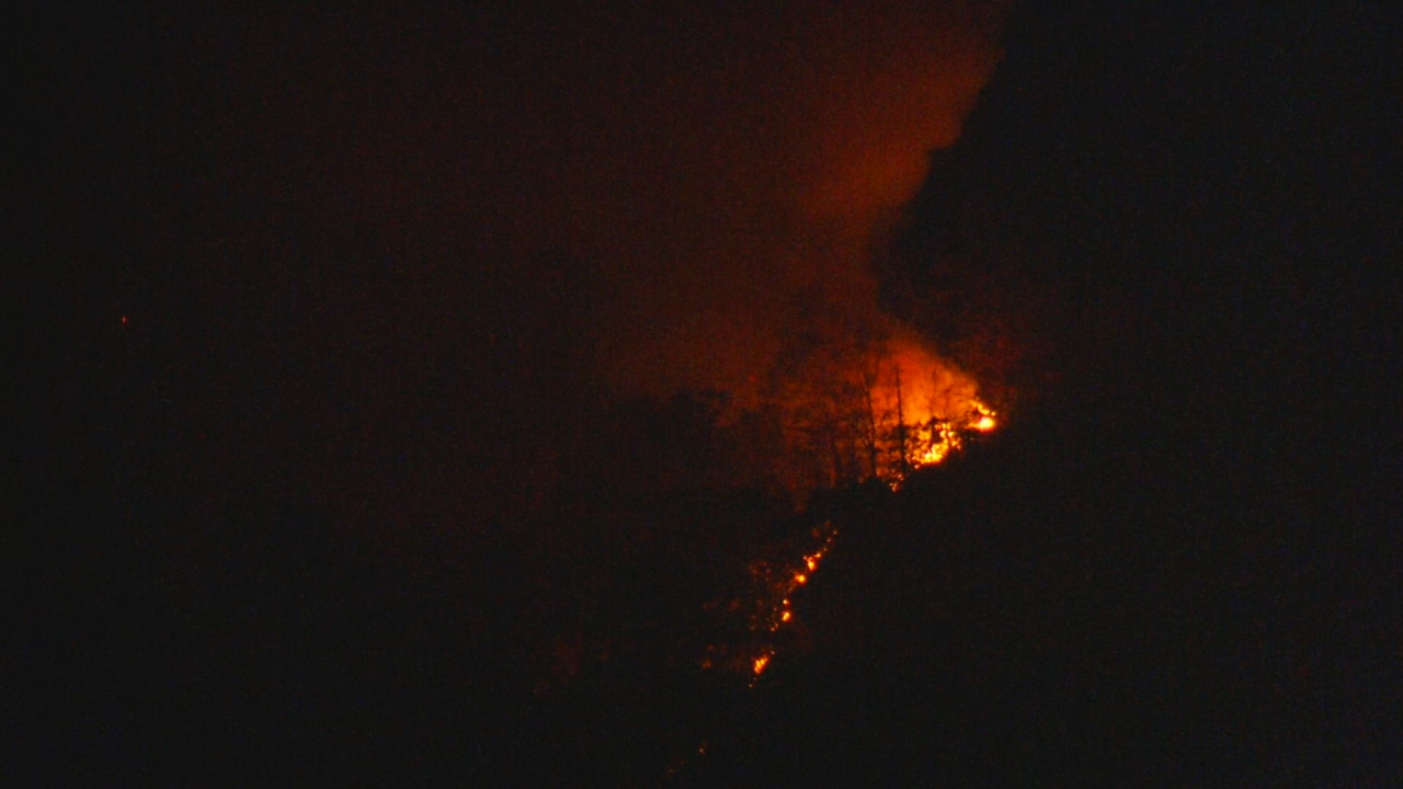 Recent roadside fires in McDowell County have sparked arson investigations that could end in multiple felony charges. (Photo credit: WLOS staff)