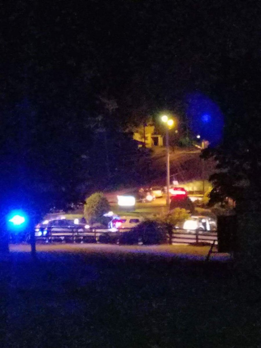The Amherst County Sheriff's Office said during the course of the traffic stop, a passenger in the vehicle pulled out a gun and shot one deputy in the head (Photo: Danny Newton)