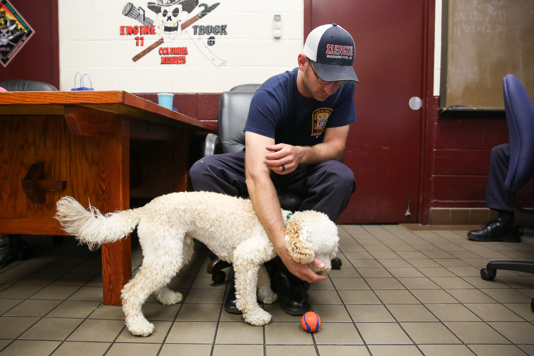 Zucca, a golden doodle who is just over a year old, stopped by at Engine Company 11 in Columbia Heights. He enjoyed having a ball thrown around by firefighters and EMS workers in the fire house. (Amanda Andrade-Rhoades/DC Refined)