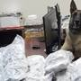 Monroe Co. deputy K-9 busts man with 14 pounds of marijuana