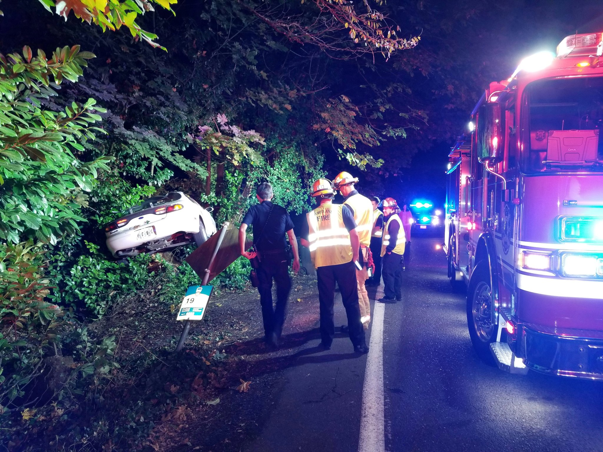 Police are searching for a male and a female occupants of a vehicle that crashed into a tree on SE Mt. Scott Blvd. early Monday morning. Photo courtesy Portland Police Bureau
