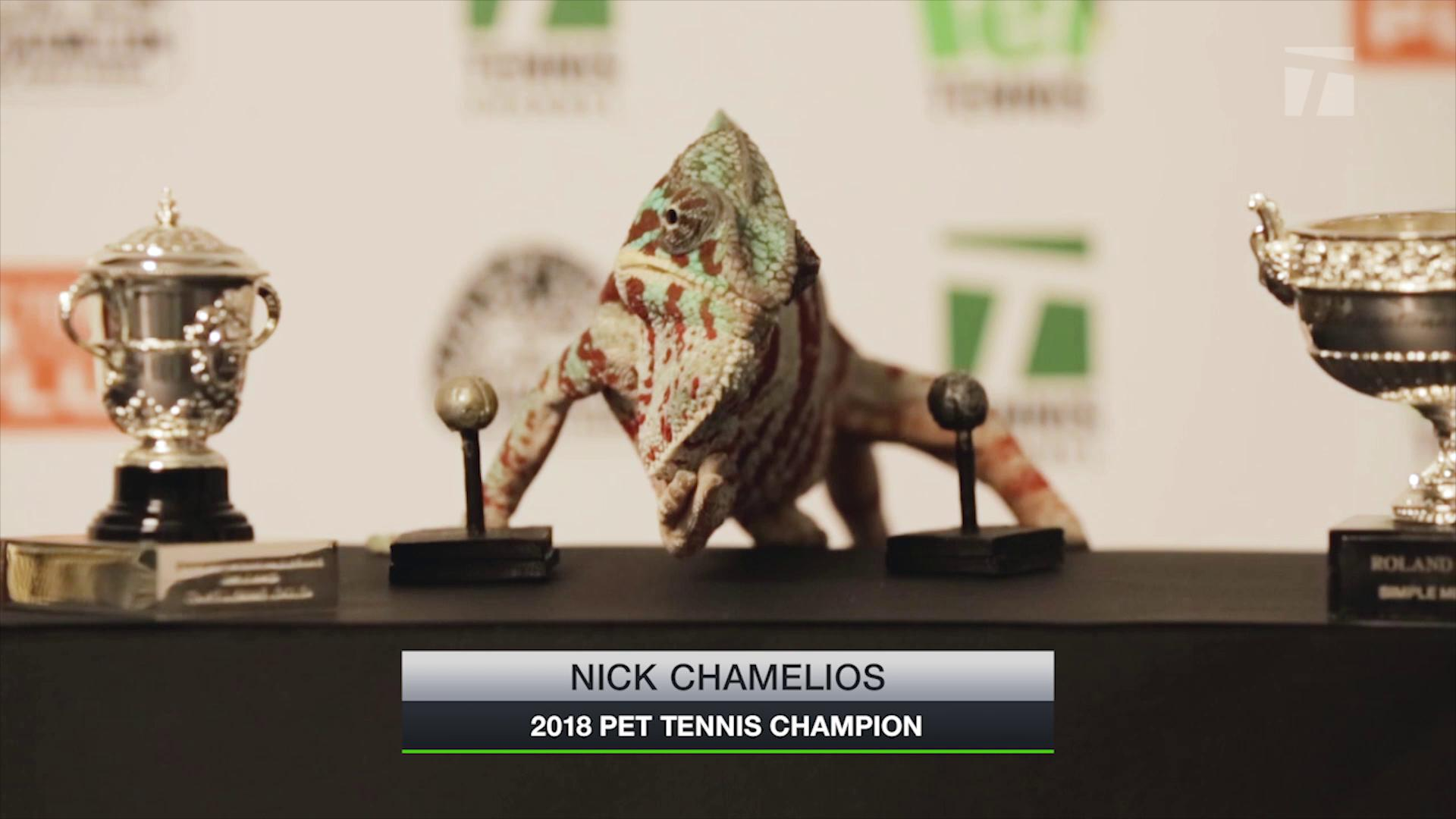 Pet Tennis_Presser_090418Thumbnail