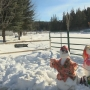 Family of snowmen vandalized, victims think it was intentional