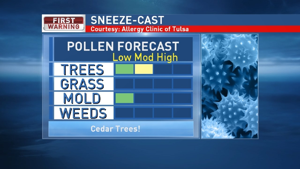 Are you sneezing? There's a reason!