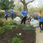 """Day of Caring"" draws 6,500 volunteers"