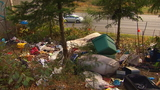 'Time to intervene': Powerful state senator wants homeless camps along highways gone
