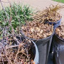 City of Quincy weekly yard waste collection ends for season