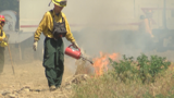New Yakima County firefighters train in wild lands to prepare for upcoming season