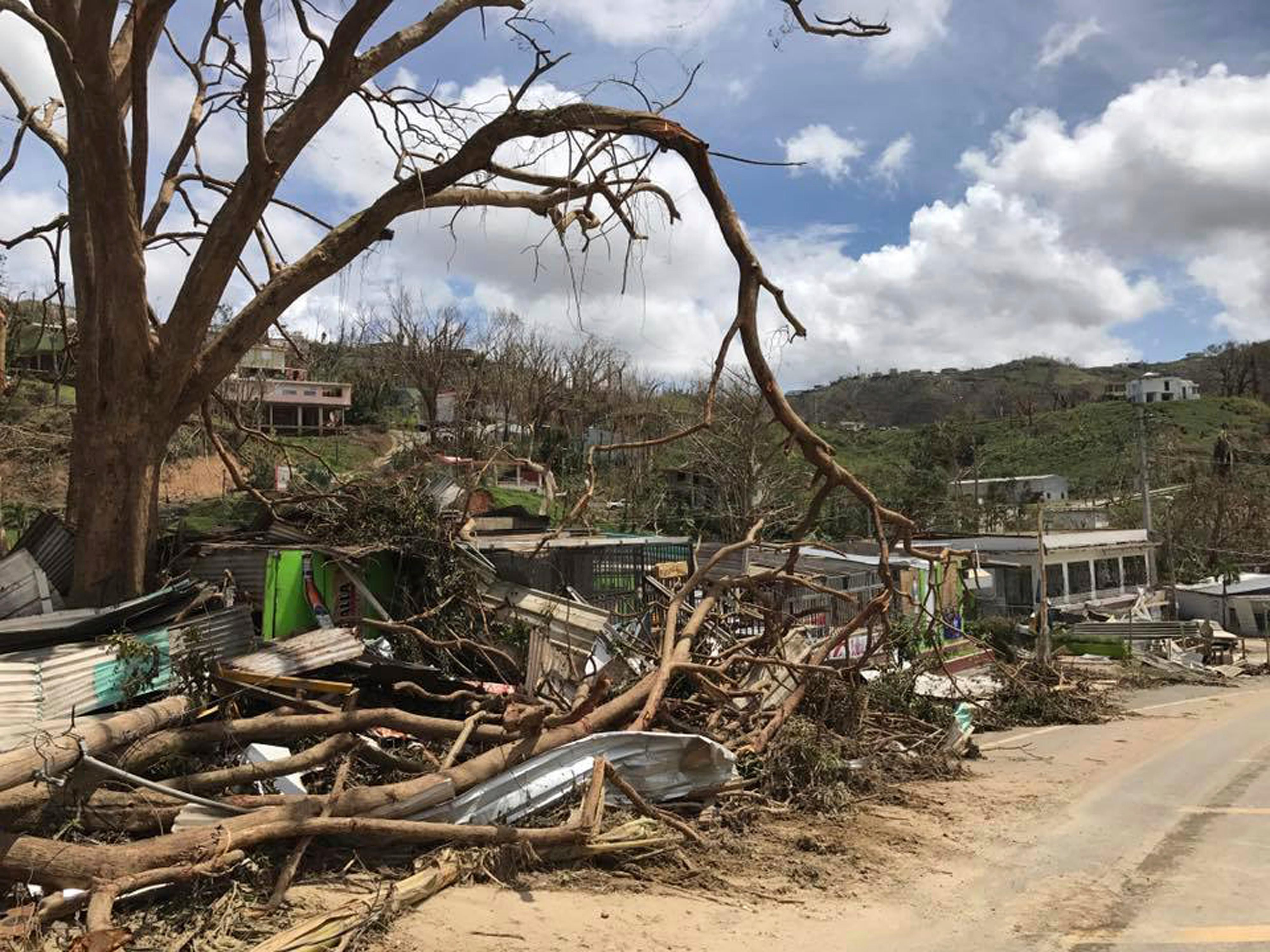 This undated photo provided by Hector Alejandro Santiago shows his farm in Barranquitas, Puerto Rico, destroyed by September 2017's Hurricane Maria. For 21 years Santiago raised poinsettias, orchids and other ornamental plants which were sold to major retailers including Costco, Walmart and Home Depot. In a matter of hours Maria wiped it away. (Héctor Alejandro Santiago via AP)